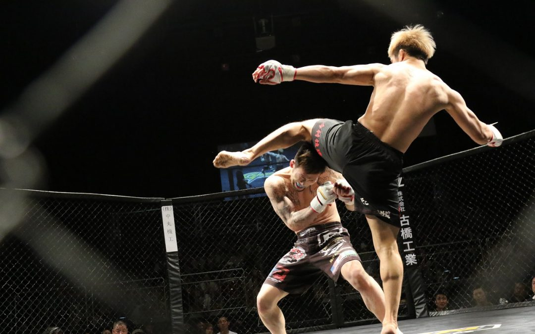 Tips for betting on UFC fights